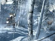 Assassins-Creed-3-Screenshot-03