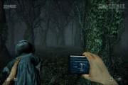 Daylight Forest 3