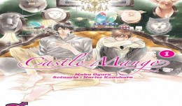 castle mango tome 1 cover