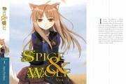 Spice & Wolf roman 1