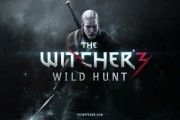 the witcher 3 concours screen 2