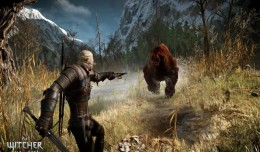 the witcher 3 concours screen 6