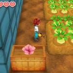 Le gameplay a été facilité au niveau de l'exploitation agricole