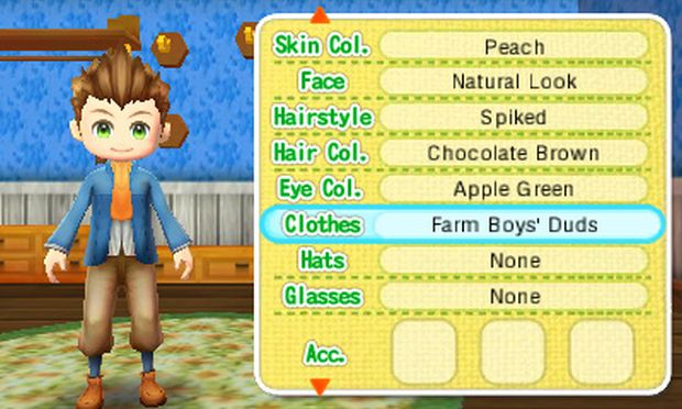 Story of Seasons Screen 4