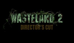 wasteland 2 test review logo