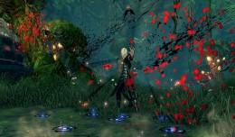blade & soul conjureur