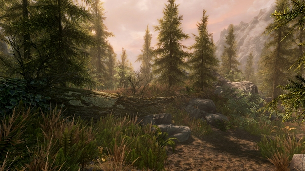 skyrim special edition screen graphics (3)