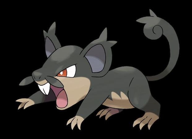 Rattata pokémon soleil lune alola